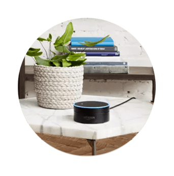 DISH Hands Free TV - Control Your TV with Amazon Alexa - Amory, MS - N.E.A Satellites - DISH Authorized Retailer